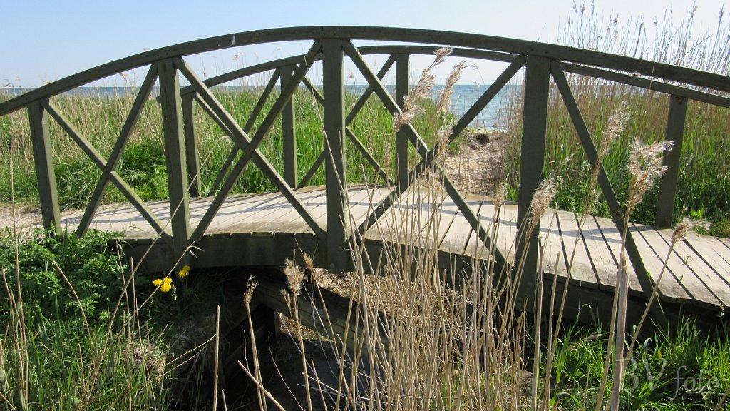 Marsvinvej træbro, Nysted