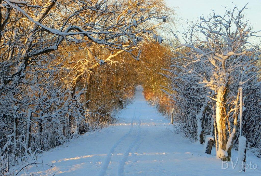 Nysted-Vinter-4.jpg