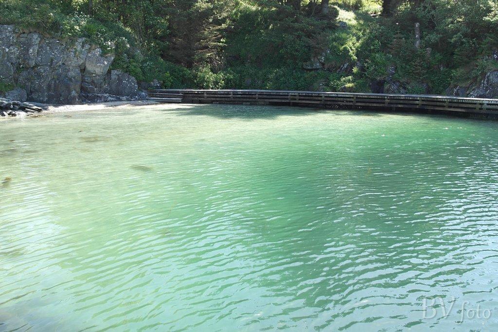 Asalvika badevand