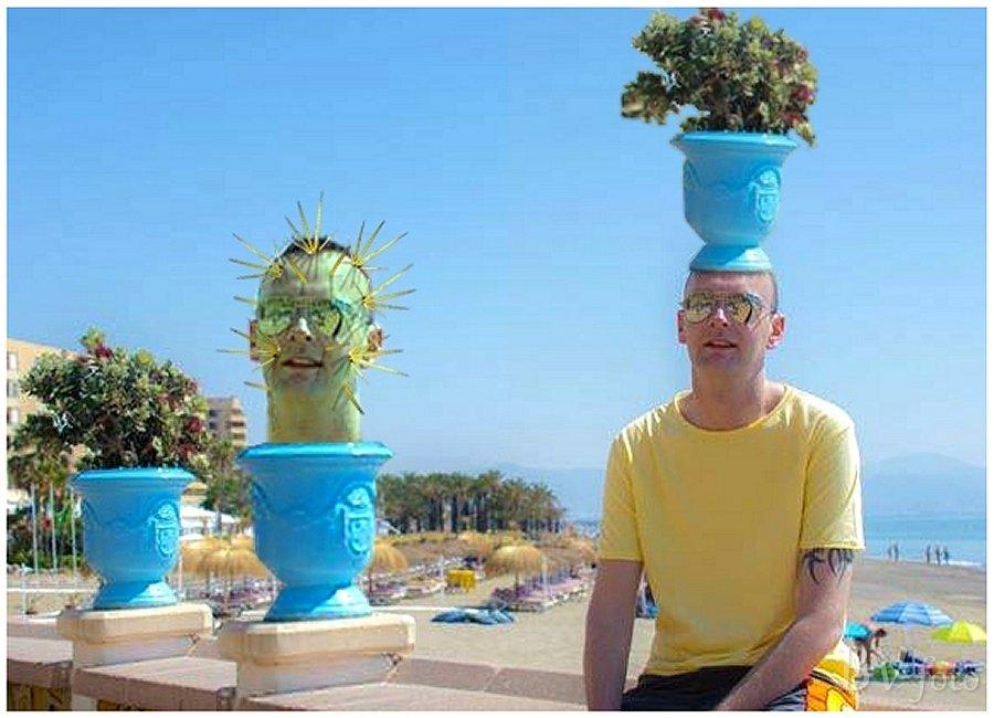 Kaktus Hoved