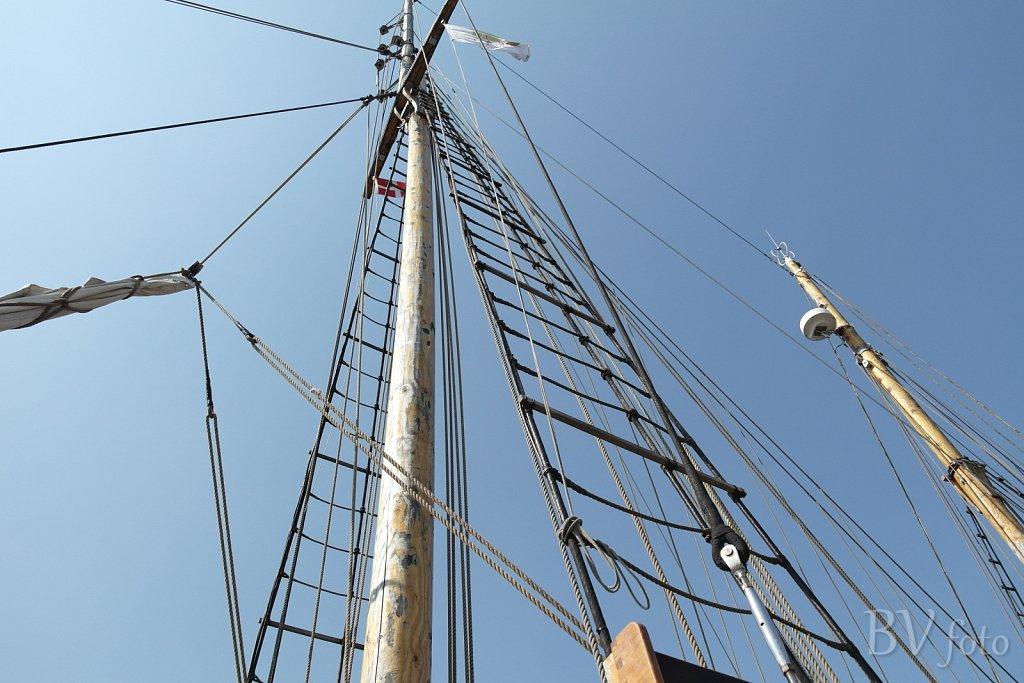 Carmelan Mast