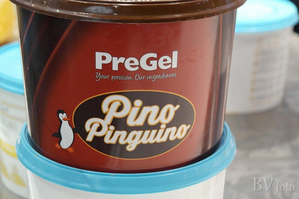 Pino Pinguino